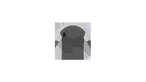 Audio :: Campaña